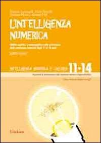 Vol. 4: Abilità cognitive e metacognitive nella costruzione della conoscenza  numerica dagli 11 ai 14 anni