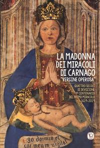 """La Madonna dei miracoli di Carnago """"Vergine Operosa"""""""
