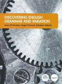 Discovering English grammar and variation