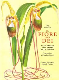 Il fiore degli dei : l'orchidea dal mito alla storia / Luigi Berliocchi ; presentazione di Ippolito Pizzetti