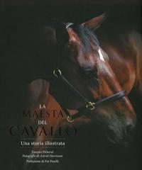 La maestà del cavallo