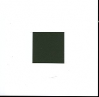 Il quadrato