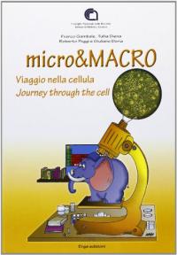 micro&MACRO