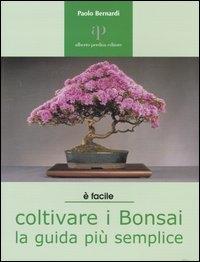 Coltivare i bonsai