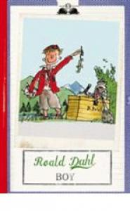 Boy / Roald Dahl ; illustrazioni di Quentin Blake ; [traduzione di Donatella Ziliotto]