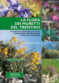 La flora dei muretti del Trentino