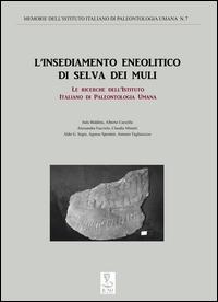 L'insediamento eneolitico di Selva dei Muli