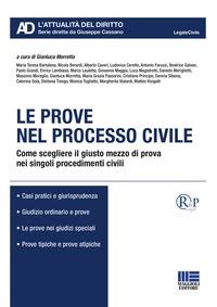Le prove nel processo civile