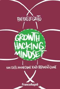 Growth hacking mindset