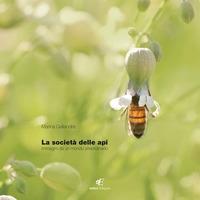 La società delle api