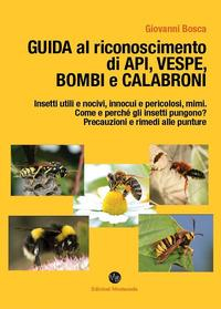 Guida al riconoscimento di api, vespe, bombi e calabroni
