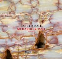 Barry X Ball