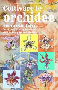 Coltivare le orchidee in casa tua