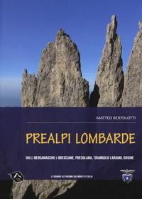 Prealpi lombarde / Matteo Bertolotti