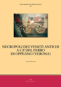 Necropoli dei veneti antichi a ca' del ferro di Oppeano (VERONA)