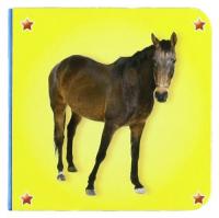 [Cavallo]
